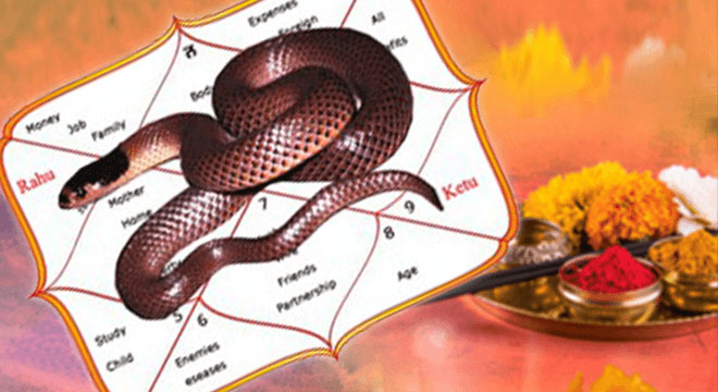 Kaal Sarp Dosha Nivaran Puja